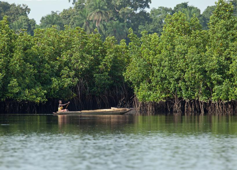 Flusskreuzfahrt Gambia