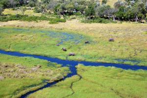 Botswana - Simbabwe - Naturparadies Okavango-Delta