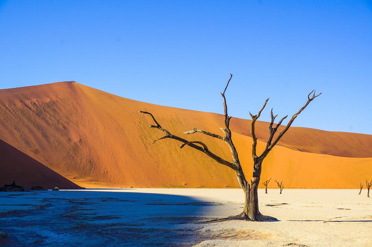 Die Vielfalt Namibias und Südafrikas