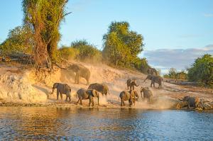 Donnernder Rauch und Okavango-Delta