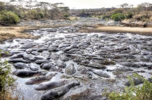 Expedition Zambia - Malawi