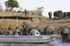 Kapstadt - Victoria Falls - Chobe Nationalpark