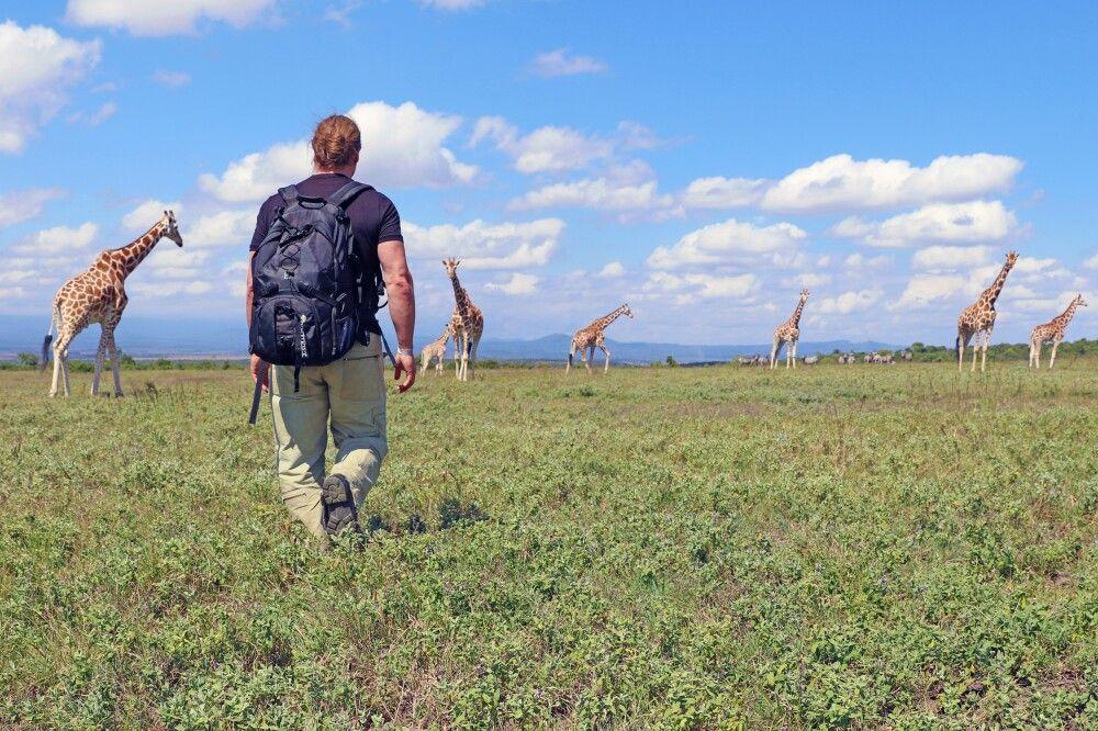 Kenia - Die Savanne und das Hochland aktiv entdecken