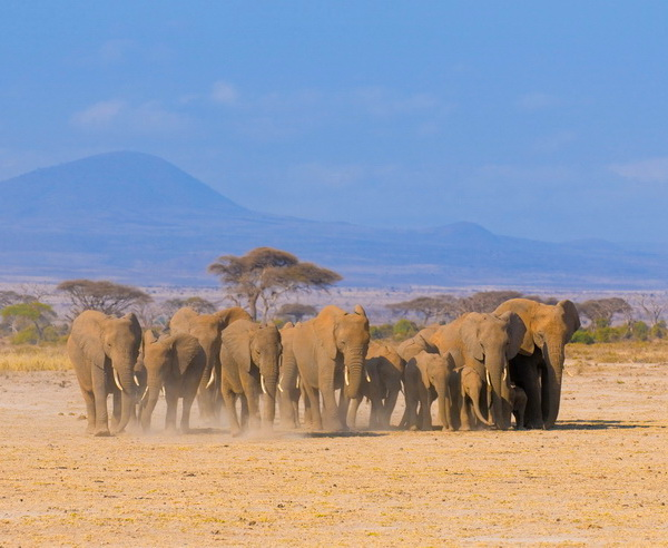Kenia - Jenseits von Afrika