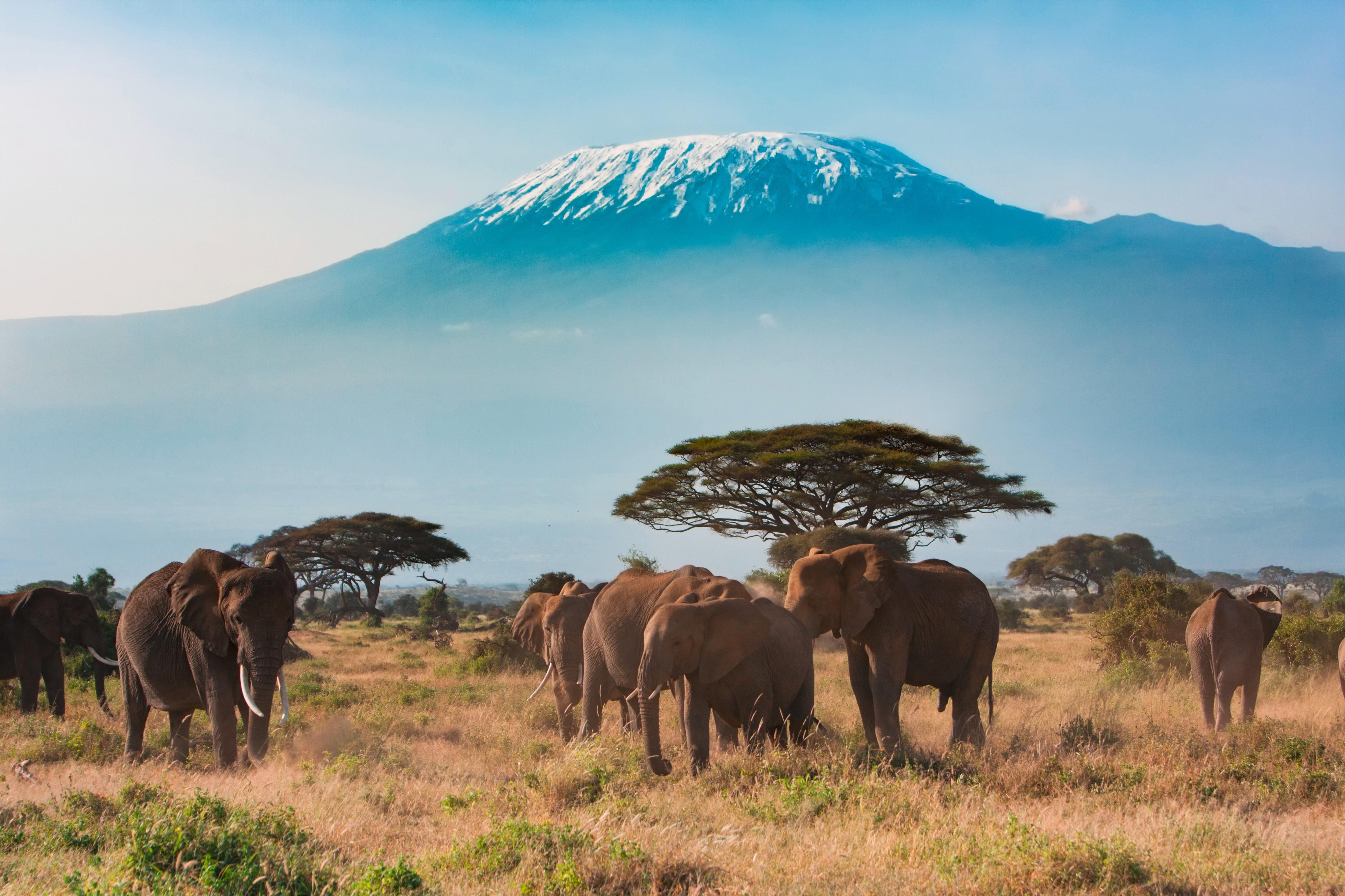 Kenia: Höhepunkte