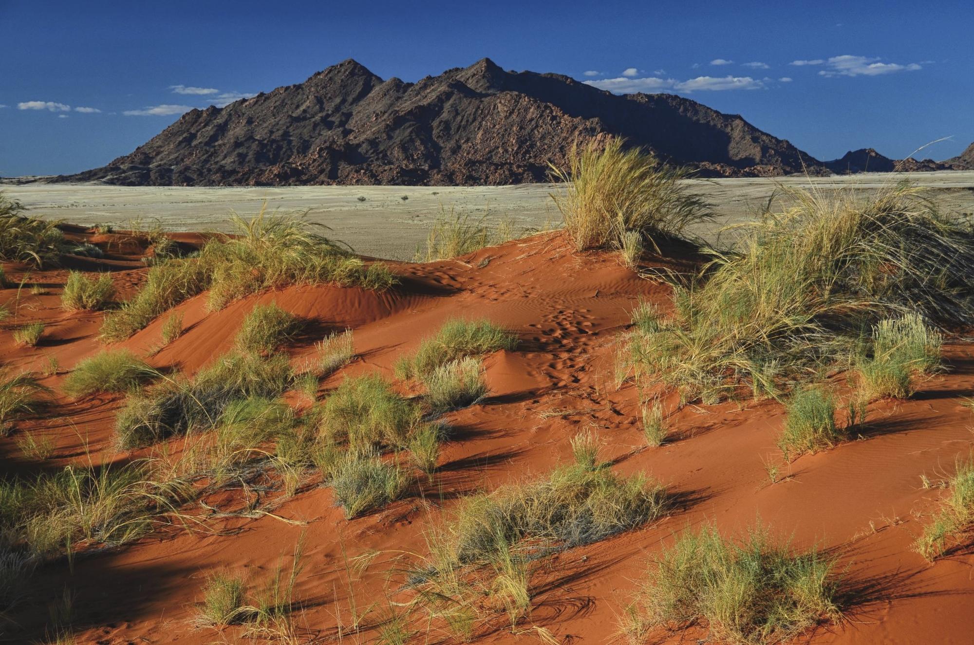 Komfort-Expedition im südlichen Afrika