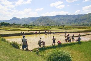 Madagaskar - Facettenreiches Madagaskar aktiv erleben