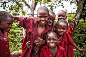 Malawi • Sambia - Tiere, Tauchen, Teeplantagen
