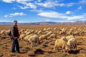Marokko - Kultur und Toubkal-Trekking