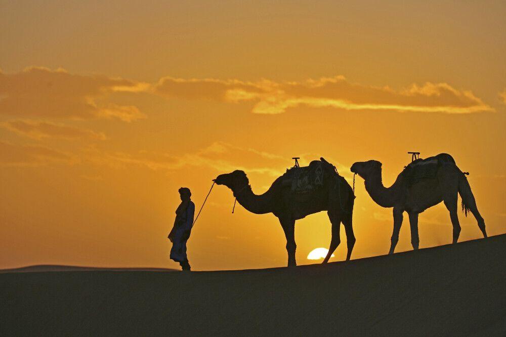 """Marokko - Medinas, Oasen und """"Berber-Whiskey"""""""