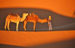 Marokko - Wüstentrekking im Land der Berbernomaden