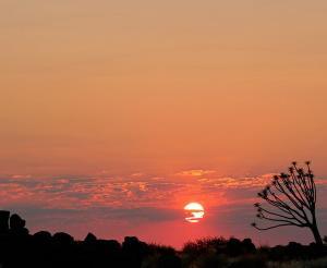 Namibia & Botswana - Wüste, Weite und Wildnis pur (feste Unterkünfte)