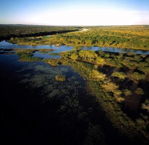 Namibia & Botswana: Die ausführliche Reise mit Victoria-Fällen