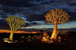Namibia - Vom Etosha-Nationalpark in den Fish-River-Canyon