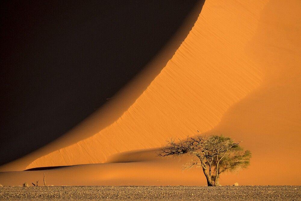 Namibia • Botswana • Simbabwe - Afrika von seiner schönsten Seite