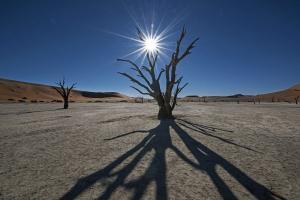 Namibia • Botswana • Simbabwe - Namibias Tierwelt im Fokus
