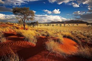 Namibia durch die Linse