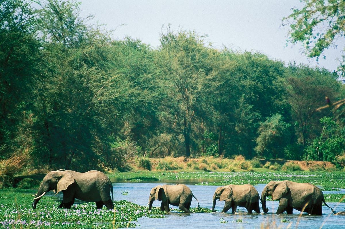 Naturschätze im südlichen Afrika