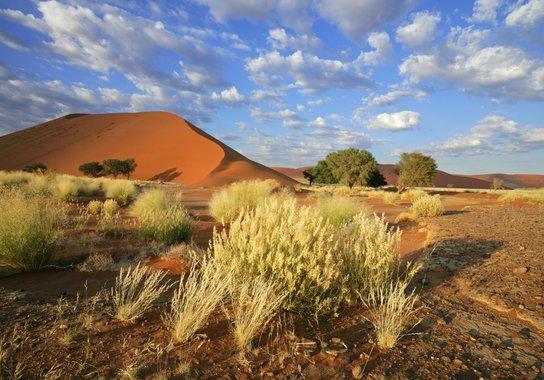 Rundreise & Baden - Namibia, Südafrika, Mauritius