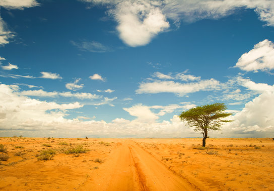 Rundreise & Baden - Tansania und Kenia