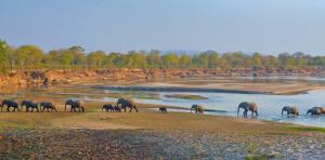 Sambia • Malawi - Buntes Mosaik im Herzen von Afrika