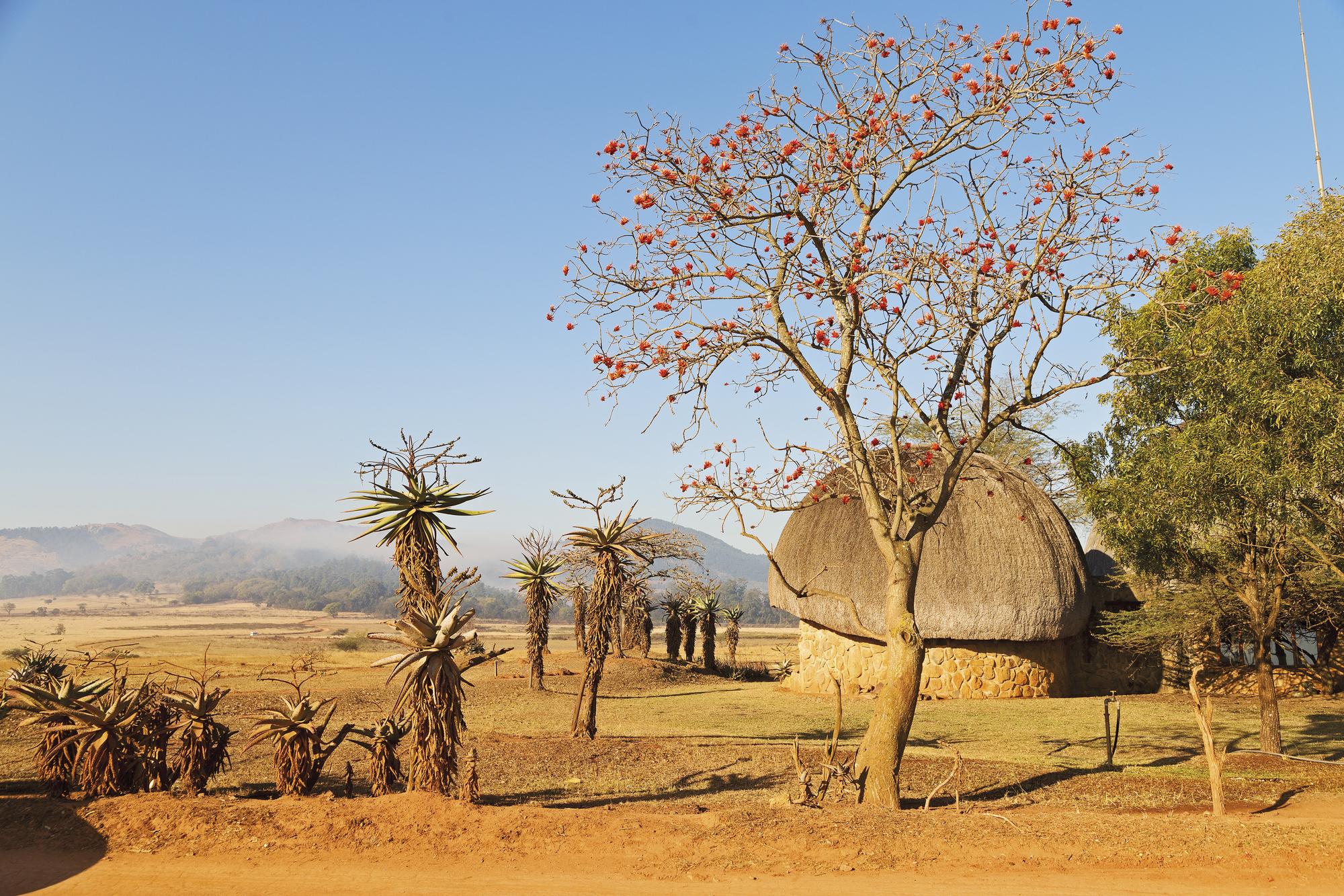 Südafrika - Mozambique - Swaziland
