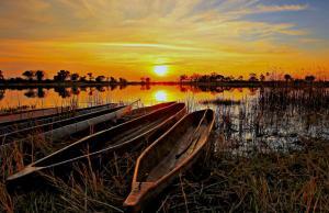 Südafrika • Namibia • Botswana • Simbabwe - Von Kapstadt zu den Victoriafällen