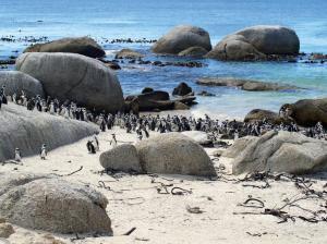 Südafrika • Namibia • Botswana • Simbabwe - Von Kapstadt zu den Victoriafällen als Campingsafari