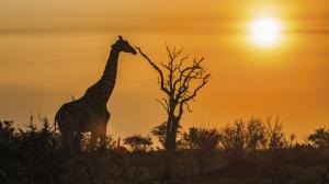 Südafrika: unterwegs im Land der Regenbogennation
