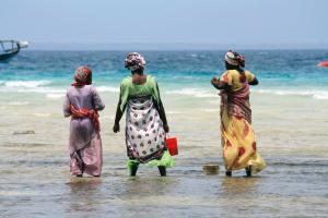 Tansania & Sansibar: Höhepunkte mit  Usambara-Bergen