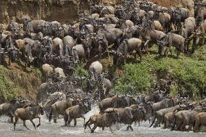 Tansania - Lodgesafari und Sansibar