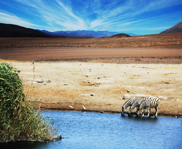 Tansania - Wilder Süden