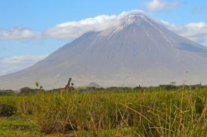 Tansania • Ruanda • Demokratische Republik Kongo - Gorillas und Vulkane im Ostafrikanischen Grabenbruch